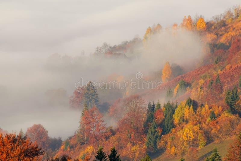 De herfstmist in de Karpatische bergen, de Oekraïne royalty-vrije stock fotografie