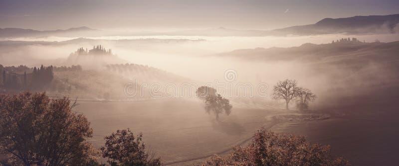 De herfstmist in vallei met bomen royalty-vrije stock afbeeldingen
