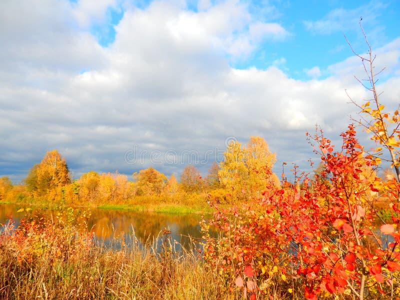 De herfstpalet stock afbeeldingen