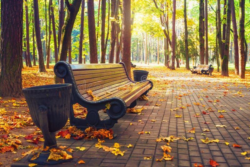 De herfstpark Autumn Landscape Bank in het de herfstpark Kleurrijke bladeren Mooie dag in heldere daling royalty-vrije stock afbeeldingen