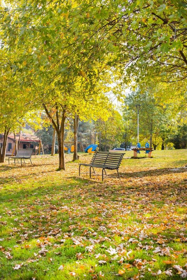 De herfstpark in Italië Banken, weide, bomen en zonlicht Mooie aard in evroppe royalty-vrije stock afbeelding