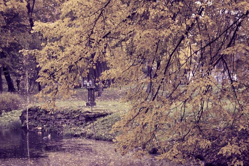 De herfstpark met de rivier toning stock foto