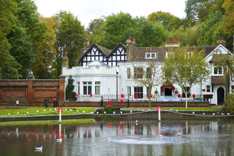De herfstpark in Surrey, het UK royalty-vrije stock afbeeldingen