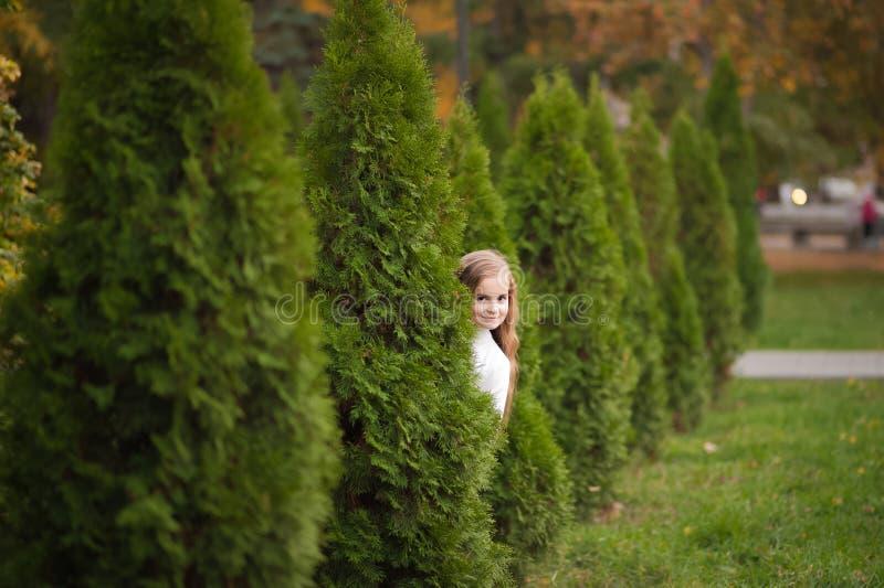 De herfstportret van een meisje in een witte sweater en jeans Een meisje met lang haar in de herfst in het park royalty-vrije stock afbeeldingen