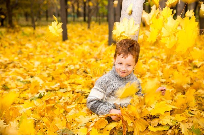 De herfstportret van mooi kind Gelukkig weinig jongen met bladeren in het park in daling royalty-vrije stock fotografie