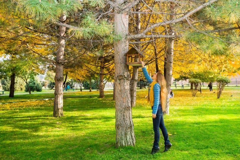 De herfstportret van mooie vrouw over gele bladeren terwijl het lopen in het park in daling Positief emoties en gelukconcept stock fotografie