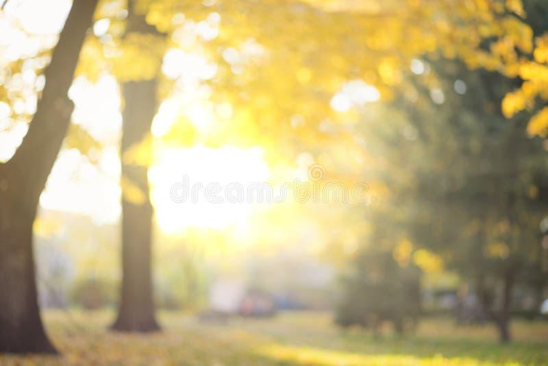 De herfstsamenvatting vage achtergrond met magische lichten stock afbeeldingen