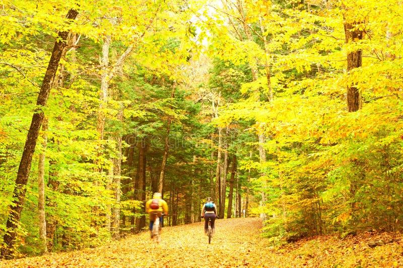 De herfstscène met fietsers royalty-vrije stock afbeeldingen