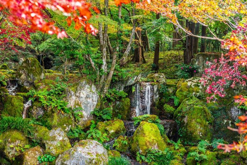 De herfstscène met waterval in park, Japan, aardachtergrond stock afbeelding