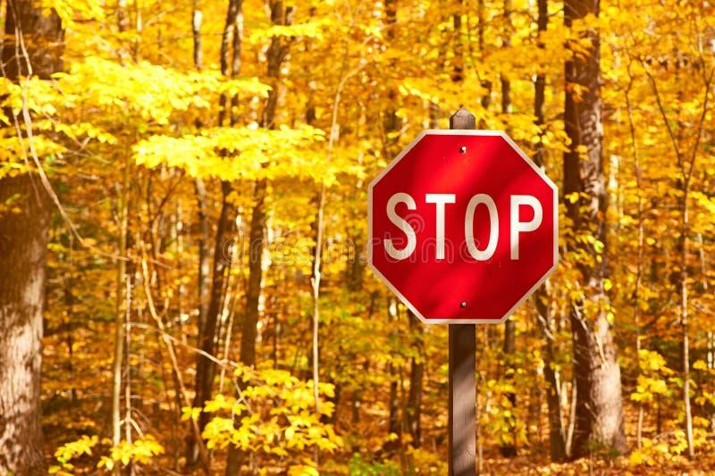 De herfstscène met weg en eindeteken stock afbeelding