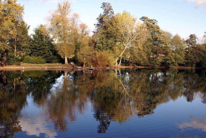 De herfstscène van een Meer in Lincolnshire, Engeland royalty-vrije stock afbeeldingen