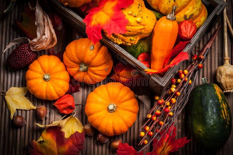 De herfststilleven met pompoenen royalty-vrije stock afbeelding