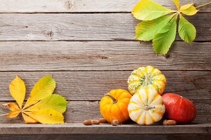 De herfststilleven met pompoenen en bladeren royalty-vrije stock afbeeldingen