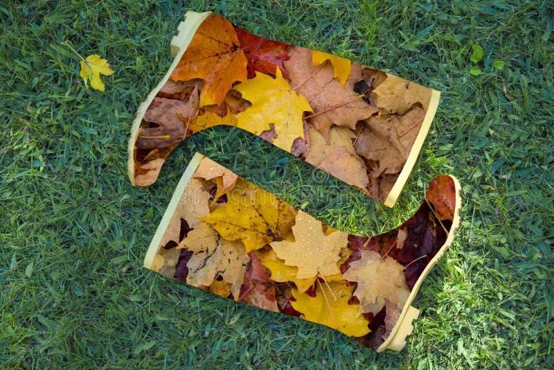 De herfststilleven van heldere rubberlaarzen met bruin bladerenpatroon op groene grasachtergrond Vlak leg Horizontaal, verticaal royalty-vrije stock afbeeldingen