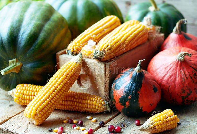 De herfststilleven van verscheidenheid van pompoenen, graan, korrel en Amerikaanse veenbesbessen royalty-vrije stock foto