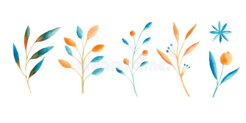 De herfstwaterverf met blauwe en oranje bladeren, paddestoelen, bessen wordt geplaatst die royalty-vrije illustratie