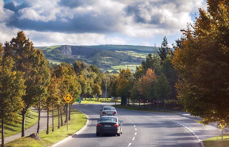 De herfstweg van het platteland van Dublin stock foto's