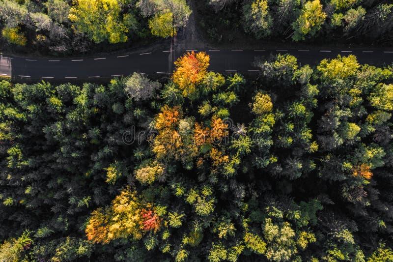De herfstwegen - overweldigende lengte stock foto