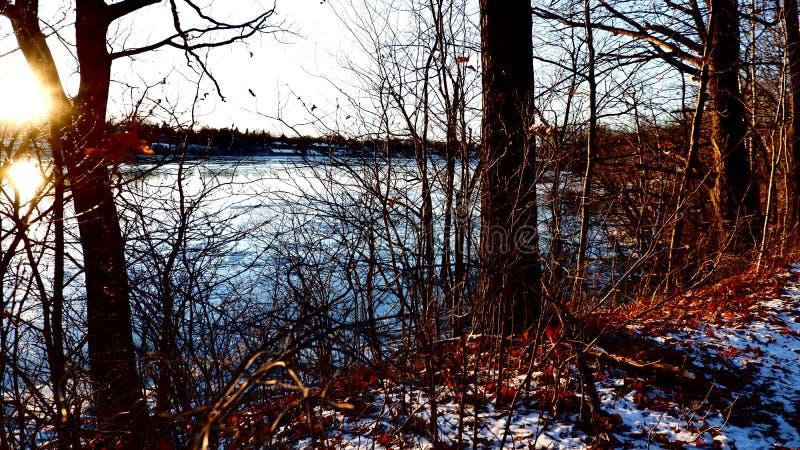 De de herfstwinter bij de rand van het water royalty-vrije stock afbeeldingen