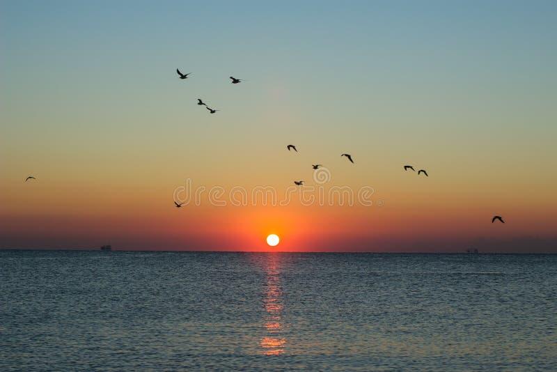 De herfstzeegezicht bij dageraad stock afbeelding