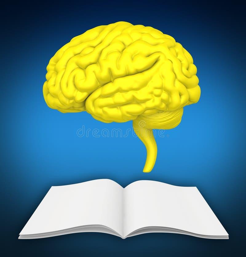 De hersenen zijn close-up op boek Het symboliseert kennis van nieuwe ideeën royalty-vrije illustratie