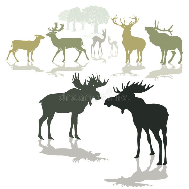De herten van elanden en fawn royalty-vrije illustratie