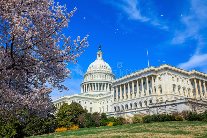 De het Capitoolbouw van de V.S. - Washington DC Verenigde Staten stock afbeelding
