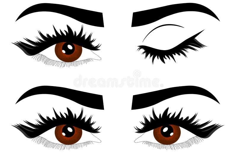De het detailillustratie van de Webclose-up van mooie vrouwelijke bruine ogen met oogleden opent en sloot stock illustratie