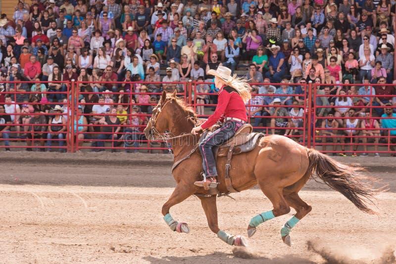 De het galopperende paard en de veedrijfster concurreren en vat het rennen gebeurtenis royalty-vrije stock foto's