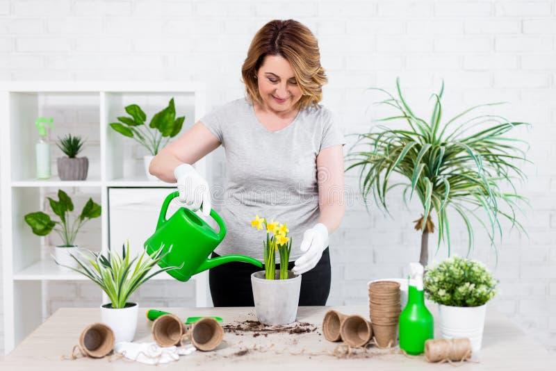 De het gelukkige rijpe vrouw planten en het water geven lente bloeien thuis stock foto