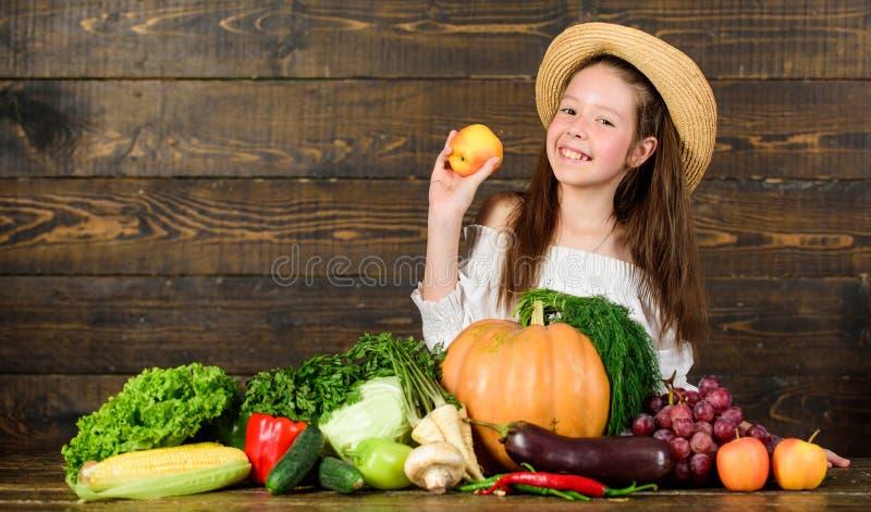 De het landbouwbedrijfmarkt van het meisjesjonge geitje met het Kind van de dalingsoogst viert het oogsten Jong geitjelandbouwer  royalty-vrije stock afbeelding