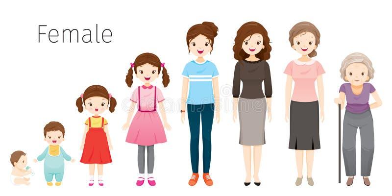 De het Levenscyclus van Vrouw Generaties en Stadia van de Menselijk Lichaamsgroei Verschillende Leeftijden, Baby, Kind, tiener, v stock illustratie
