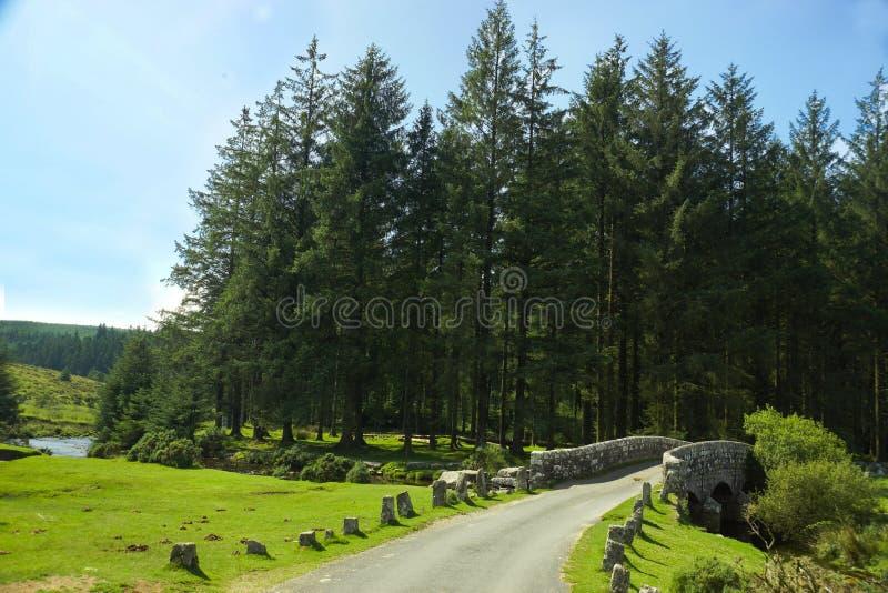 De het Pijltjerivier van het Oosten in Belever, het Nationale Park van Dartmoor, Devon, U stock foto's
