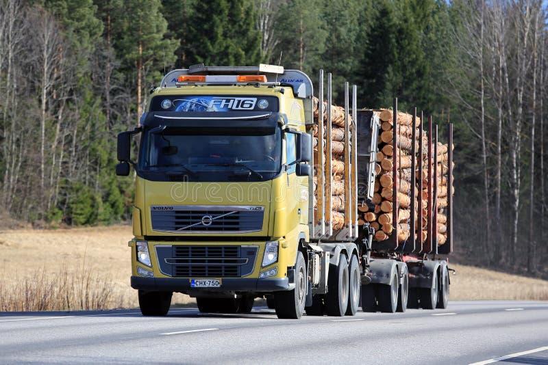 De het Registrerenvrachtwagen van Volvo FH16 vervoert Pijnboomhout royalty-vrije stock foto's