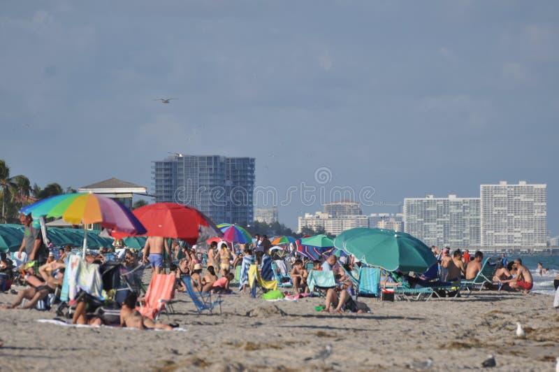 De het Strand bezige zomer van Miami, Miami, FL royalty-vrije stock foto
