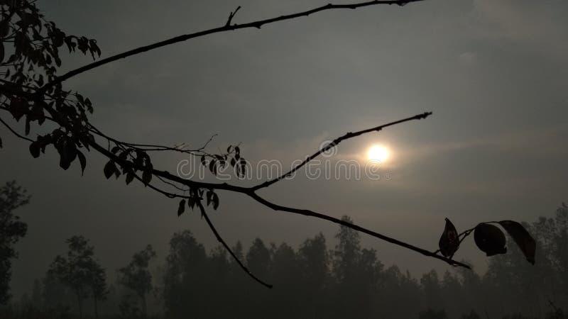 Is de het toenemen zon stock afbeelding