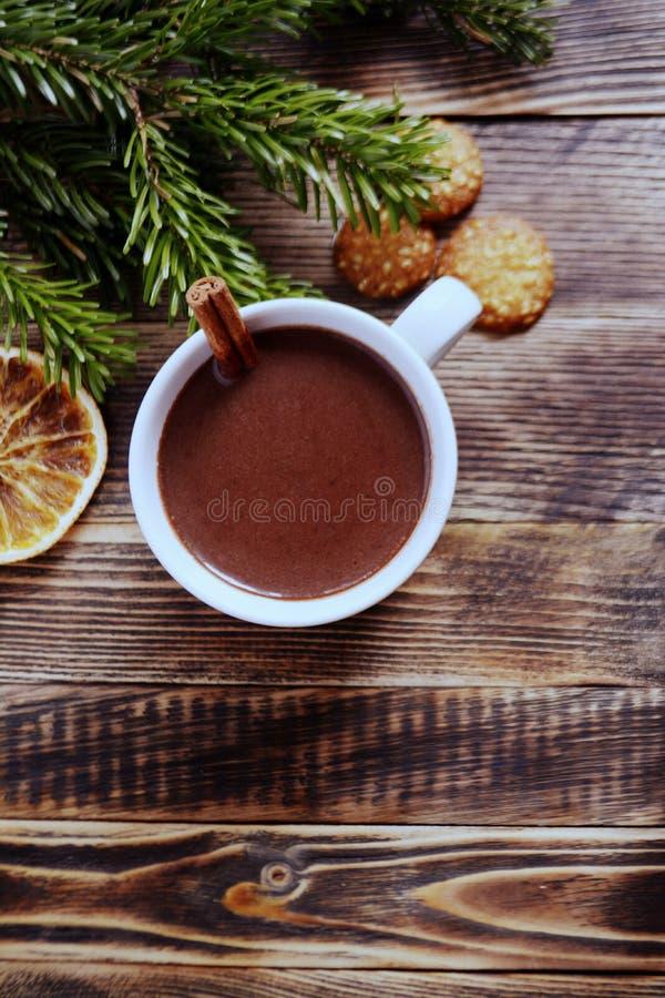 De hete chocolade of de cacao met pijpje kaneel in een kop en een spar vertakken zich stock foto