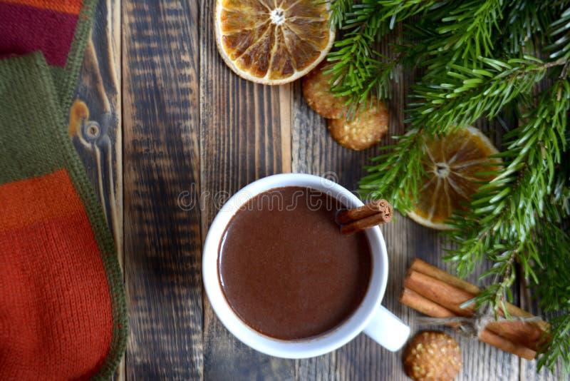 De hete chocolade of de cacao met pijpje kaneel in een kop en een spar vertakken zich royalty-vrije stock afbeeldingen