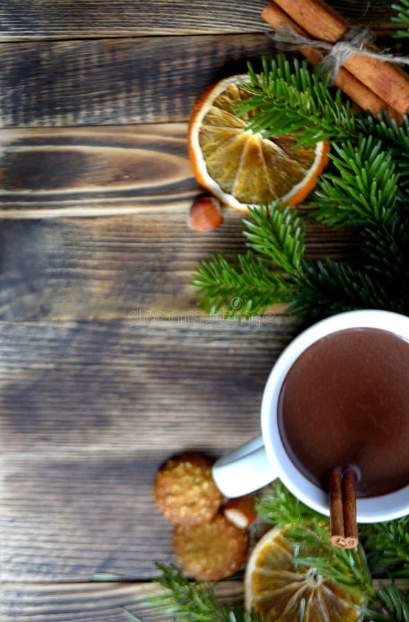 De hete chocolade of de cacao met pijpje kaneel in een kop en een spar vertakken zich royalty-vrije stock foto's