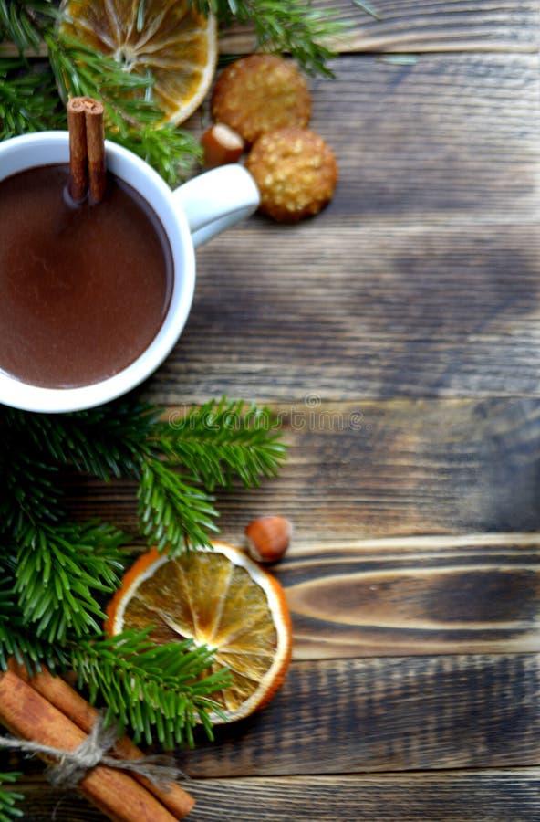 De hete chocolade of de cacao met pijpje kaneel in een kop en een spar vertakken zich stock afbeeldingen