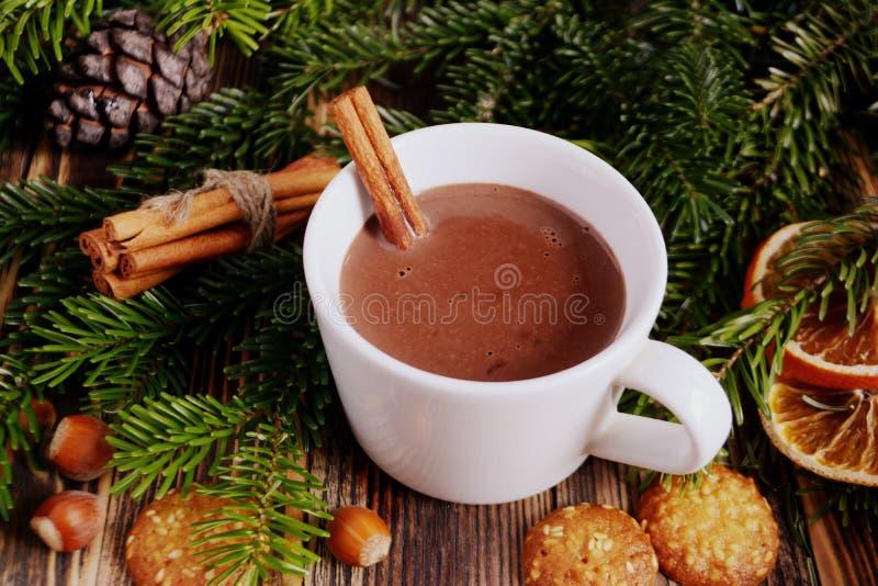 De hete chocolade of de cacao met pijpje kaneel in een kop en een spar vertakken zich royalty-vrije stock foto