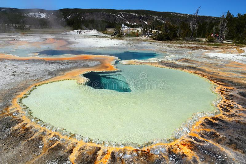De Hete Lente van de doubletpool, Hoger Geiserbassin, het Nationale Park van Yellowstone, Wyoming stock foto's