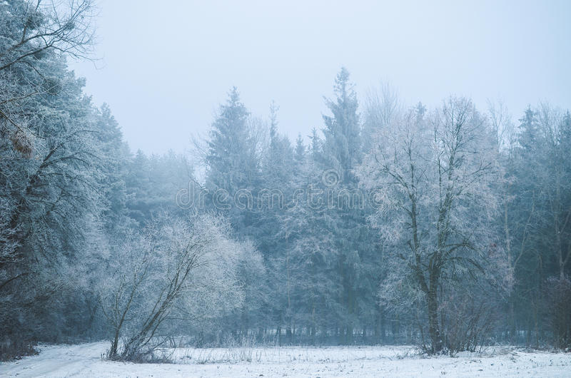 De hete winter stock foto