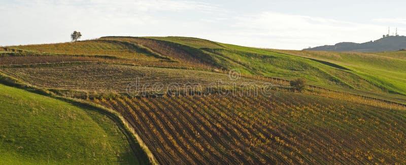 De heuvel van het panorama royalty-vrije stock afbeeldingen