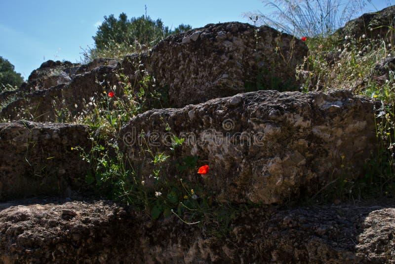 De Heuvel van Pnyx stock foto