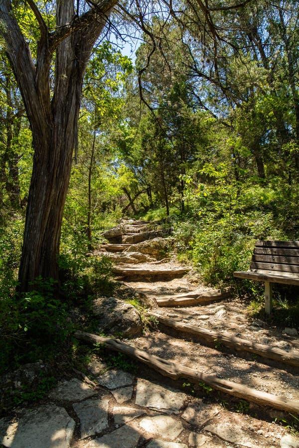 De heuvelland van Texas royalty-vrije stock afbeeldingen