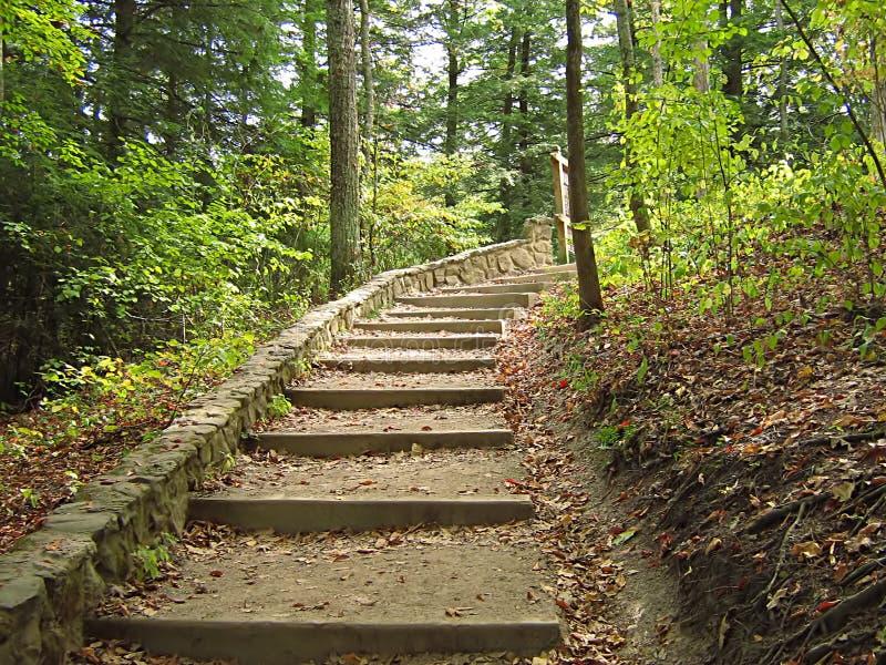 De Heuvels Ohio van Hocking royalty-vrije stock foto