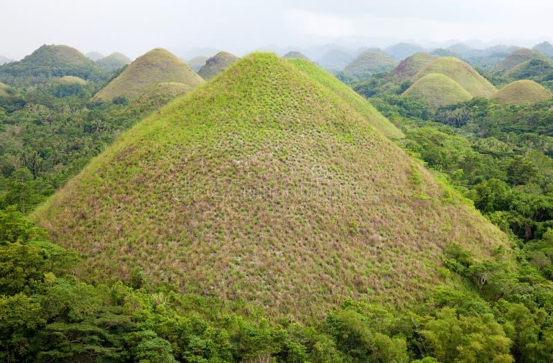 De Heuvels van de chocolade in Bohol stock foto's