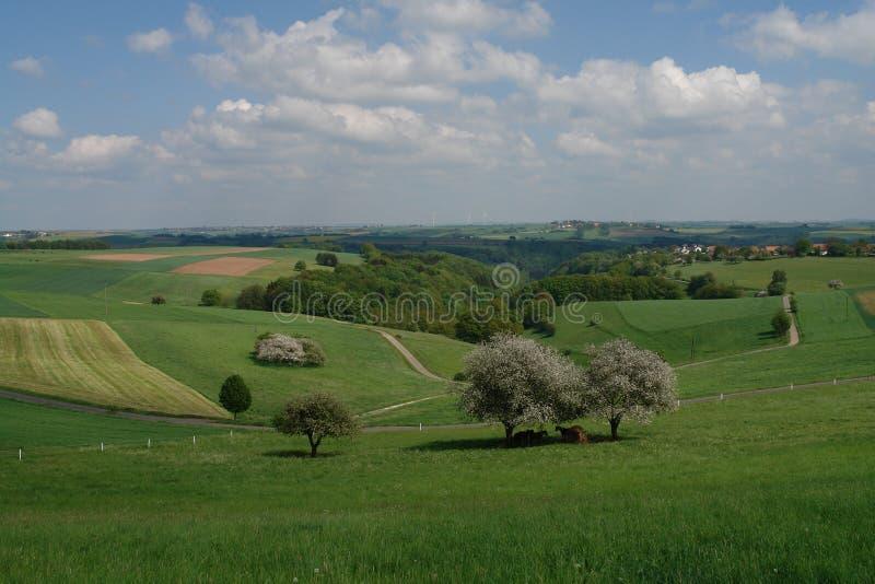 De Heuvels van de lente royalty-vrije stock afbeeldingen