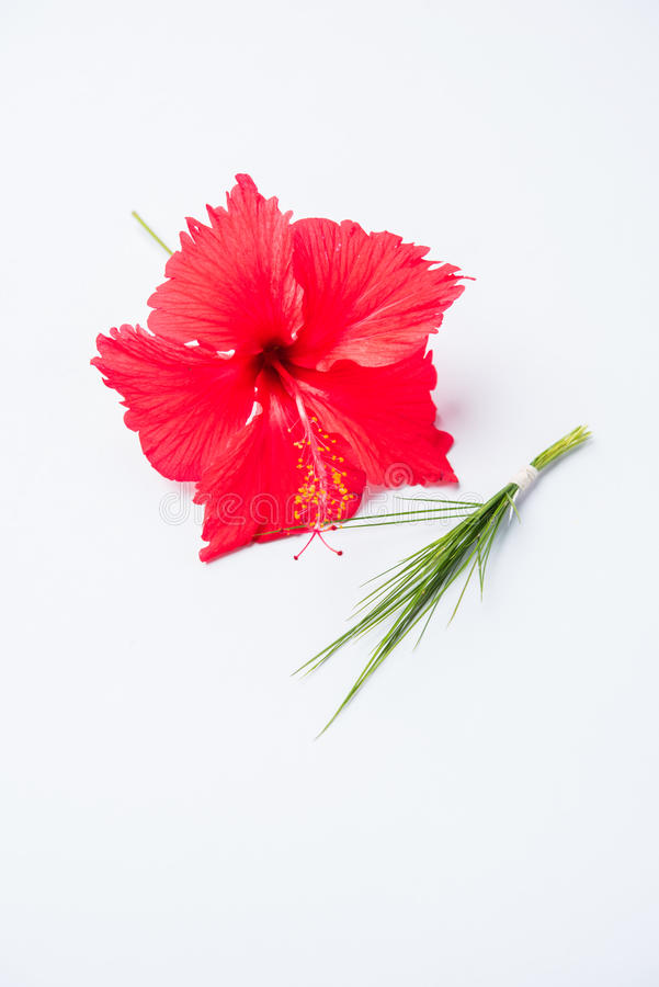De hibiscus bloeit of jasvand phool en durva of durva of groen gras die die trishul pantser vertegenwoordigen, aan Lord Ganesha w stock afbeelding
